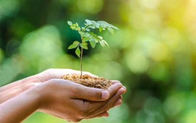 Habiter mieux & prendre soin de la planète